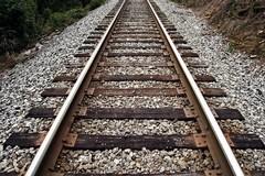 Ferrovie pugliesi, Giannini: arriva il gestore unico dell'infrastruttura e dei servizi