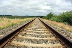 Scontro tra convogli ferroviari in Salento: 5 feriti, 10 contusi