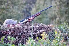 Per la Puglia arriva una nuova legge sulla caccia