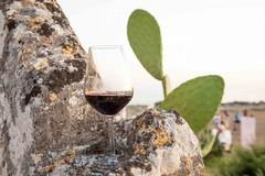 """Anche il vino pugliese nella campagna di promozione del """"Made in Italy"""" nelle ambasciate nel mondo"""