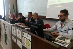 """Camminata tra gli Olivi 2^ giornata nazionale"", domenica 28 ottobre"