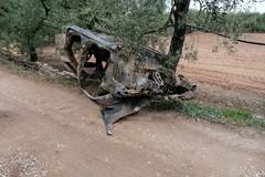 Auto rubate e cannibalizzate recuperate nelle campagne andriesi