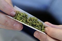 Il 17% degli studenti pugliesi fa uso di cannabis