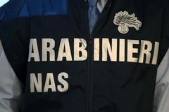 Truffe al Servizio sanitario nazionale, perquisizioni dei Nas nella Bat ed in altre province pugliesi