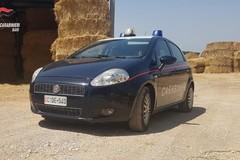 """Attentato a carabiniere, Zinni (Senso Civico): """"Questo clima di terrore non passerà"""""""