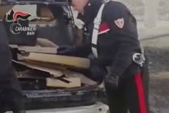 Ad Andria base per il riciclaggio di auto rubate nel nord barese, due arresti