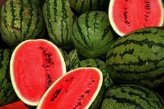 Coldiretti lancia l'allarme: crolla il prezzo della frutta. Angurie a un centesimo al chilo