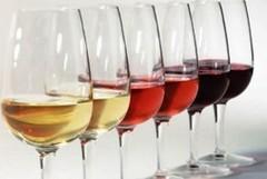 Nero di Troia Wine Tasting ad Andria il 6 ottobre