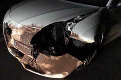 Ennesimo investimento di cinghiale sull'altopiano murgiano di Andria: auto finisce fuori strada