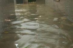 Allagamenti in città, Vurchio: «Sistema di deflusso delle acque piovane non funzionante come l'amministrazione»