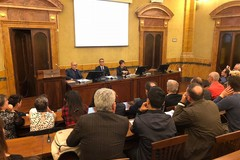 """""""L'olio dei Miracoli"""" di Andria tra i primi olii d'oliva italiani"""