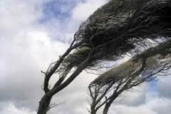 Situazione meteo: continua il forte vento per le prossime 15 ore