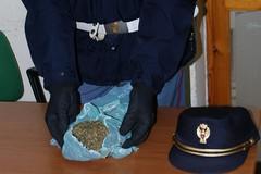 "Aveva marijuana ed un inibitore ""jummer"": arrestato ad Andria pregiudicato"