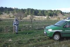 Carabinieri forestali sequestrano 10 ettari a ridosso di Castel del Monte
