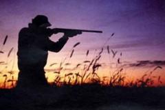 L'OIPA chiede allaRegione Pugliadisospendere l'avvio dellastagione di caccia