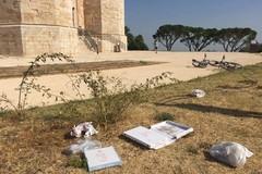 Sarà ripulita la pineta di Castel del Monte