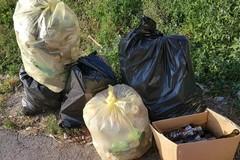 "3place: cleanup in azione nel parco ""Graziella Mansi"""