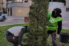 """L'associazione 3Place dona l'albero """"Samuele"""" al centro San Michele di Andria"""