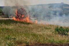 Incendi e rifiuti, il flagello della Puglia