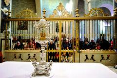 Sacra Spina di Andria, una storia di fede e prodigi: nel 2016 l'ultimo evento miracoloso