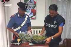 """Garage della droga"", blitz dei Carabinieri"