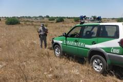 Rifiuti pericolosi verso l'Africa: arresti tra Andria e Ruvo di Puglia