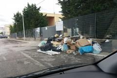"""Rifiuti, Forum Ambiente Salute Andria: """"No all'abbandono indiscriminato. Presto soluzioni per l'isola ecologica"""""""