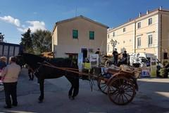 Andria festeggia San Martino al borgo Montegrosso