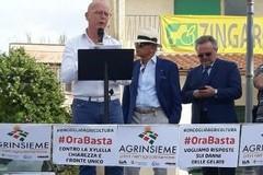 Il presidente della Copagri Puglia Tommaso Battista è il nuovo coordinatore di Agrinsieme Puglia