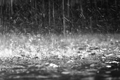 La primavera tarda ancora ad arrivare: maltempo, nuvole e pioggia su Andria