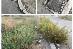 Residenti di via Stazio: assediati da erba infestante e cumuli di rifiuti