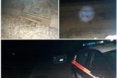 Tentato furto di cavi sulla tratta ferroviaria Bari Nord ad Andria