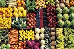 Agricoltura biologica, Puglia sul podio mentre aumentano i consumi