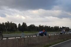 Maltempo in agricoltura, in Puglia più gasolio agricolo