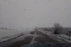 Nevica in Puglia sugli uliveti e sui mandorli fioriti: forti raffiche di vento gelido sferzano alberi e campagne