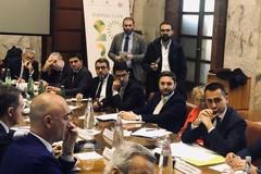L'allarme di Coldiretti: «I frantoi di Puglia potrebbero chiudere nel giro di un anno. Solo nella Bat 84»