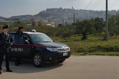 Droga fra i libri di scuola: la segnalazione dei Carabinieri di Andria