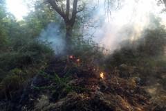 Notte di paura in contrada Abbondanza: fuoco nel bosco, 4 ettari distrutti
