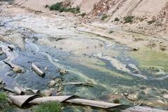 """Impianti pubblici rifiuti: """"Trani come Andria non ha condiviso alcun piano regionale"""""""