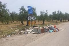 Borgata Troianelli, prosegue senza sosta l'invasione dei rifiuti