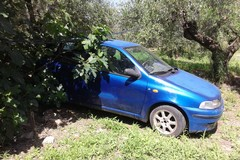 Due auto rubate a Molfetta ritrovate nelle campagne vicino al Santuario della Madonna dei Miracoli