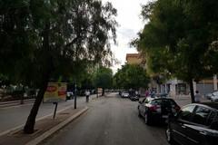 Potatura alberi: divieti al traffico su via Aldo Moro e via Appiani dal 12 al 14 dicembre