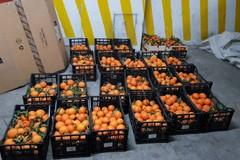 Ad Andria la frutta sequestrata viene donata in beneficenza