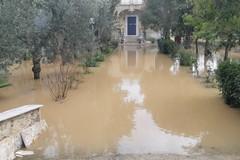Maltempo ad Andria: campagne e case allagate nei pressi della tangenziale