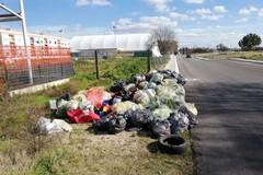 Né u vò, l'app contro i roghi di rifiuti e i sacchetti selvaggi