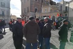 14 febbraio: tutto pronto per la più grande manifestazione dell'olivicoltura italiana