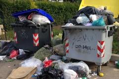 Cassonetti traboccano di rifiuti in contrada Madama Camilla