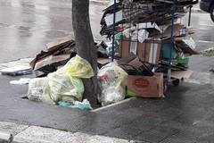 Degrado in via Annunziata: rifiuti abbandonati vicino ad un albero