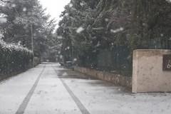 Meteo, la Protezione Civile dirama un'allerta neve