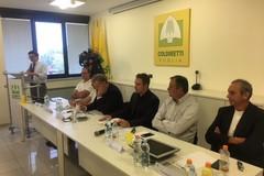 """Annata agraria, Coldiretti: """"Primi 6 mesi di annata agraria tra luci e ombre, export in salita e produzioni in calo"""""""